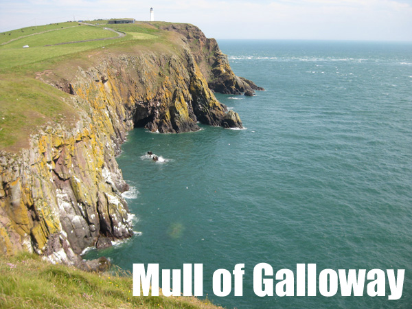 Mull of Galloway, Puffin